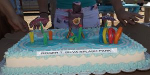 The cake depicting the Splash Park.