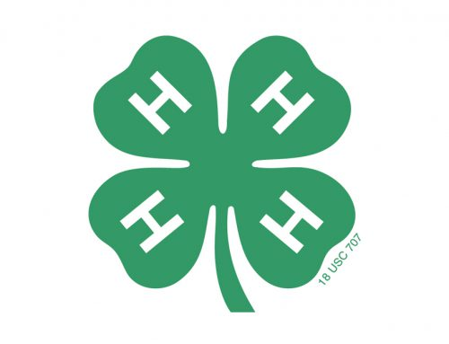 Grant County 4-H Community Service Projects