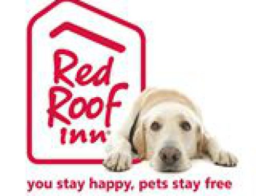 Win a VIP Pass from Red Roof!