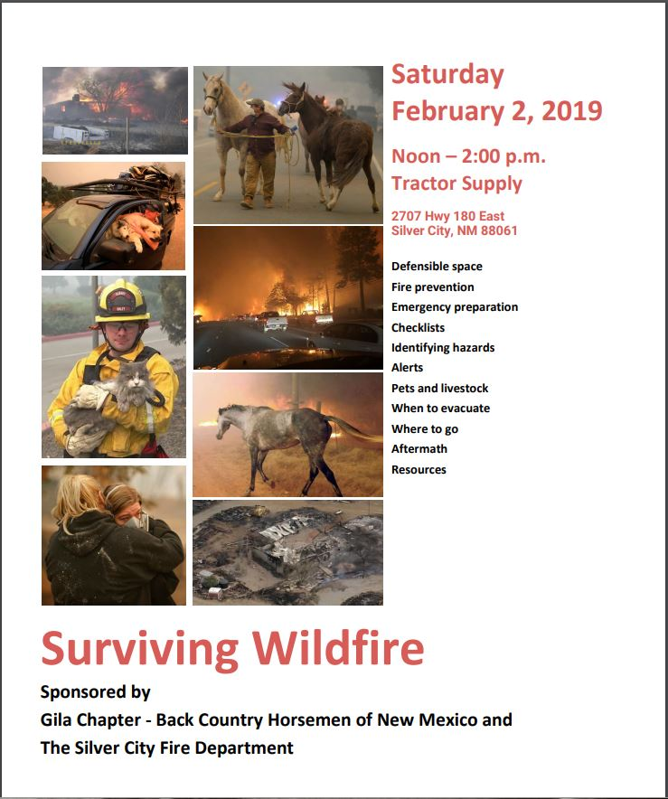 Free Surviving Wildfire Event