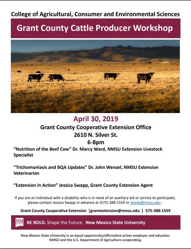Cattle Workshop