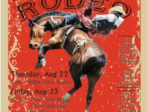 Hidalgo County Fair Rodeo 2019