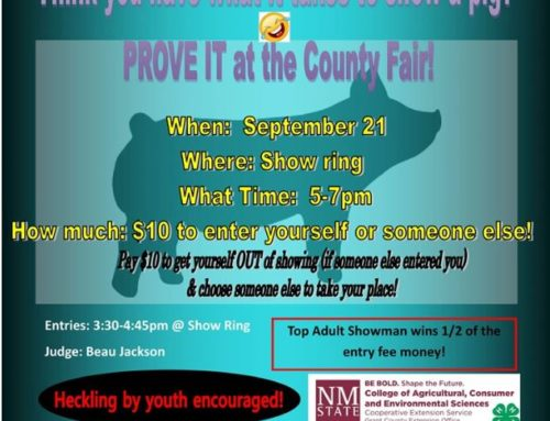 Grant County Fair Pig Show