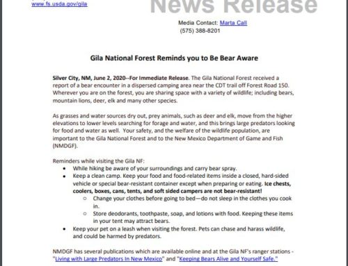 Gila National Forest Reminds Visitors to be Bear Aware