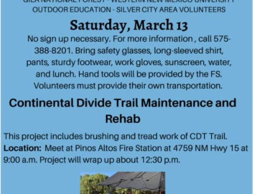CDT Trail Maintenance and Rehab