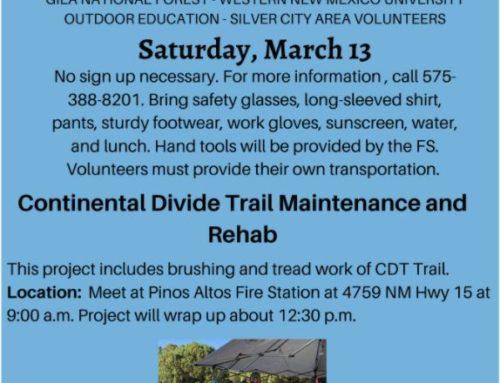 CDT Trail Maintenance and Rehab