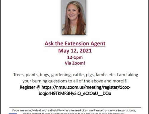"""Ask the Extension Agent"" Free Zoom Event"