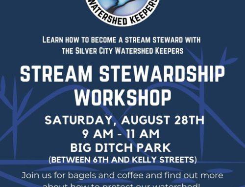 Steam Stewardship Workshop