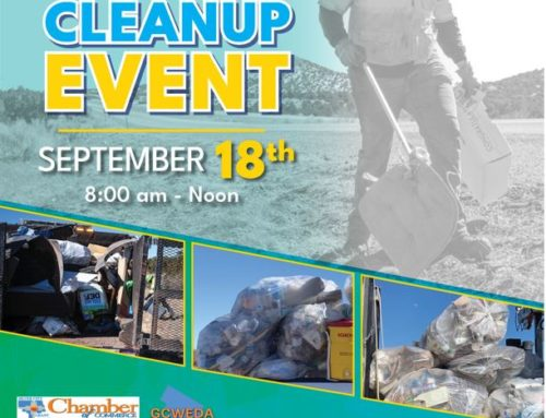 Statewide Litter Cleanup Event