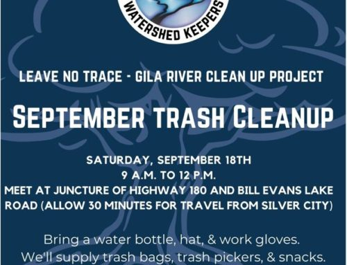 Bill Evans Lake Cleanup Event